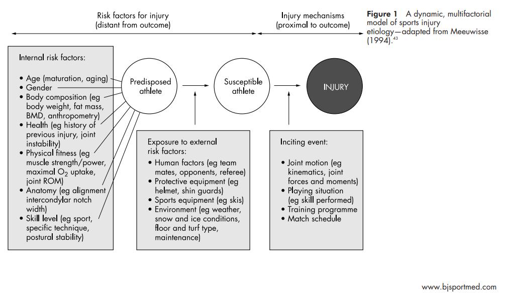 Meeuwisse model sportblessure risico factoren